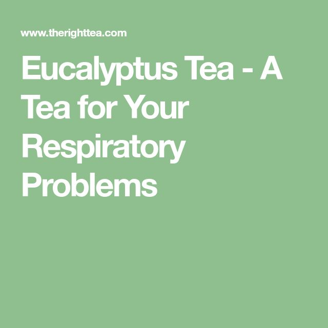 Eucalyptus Tea - A Tea for Your Respiratory Problems