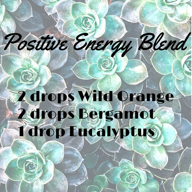 Diffuser Blends -- Positive Energy Blend #WildOrange #Bergamot #Eacalyptus