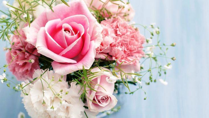 Gambar Bunga Mawar Pink Dalam Rangkaian