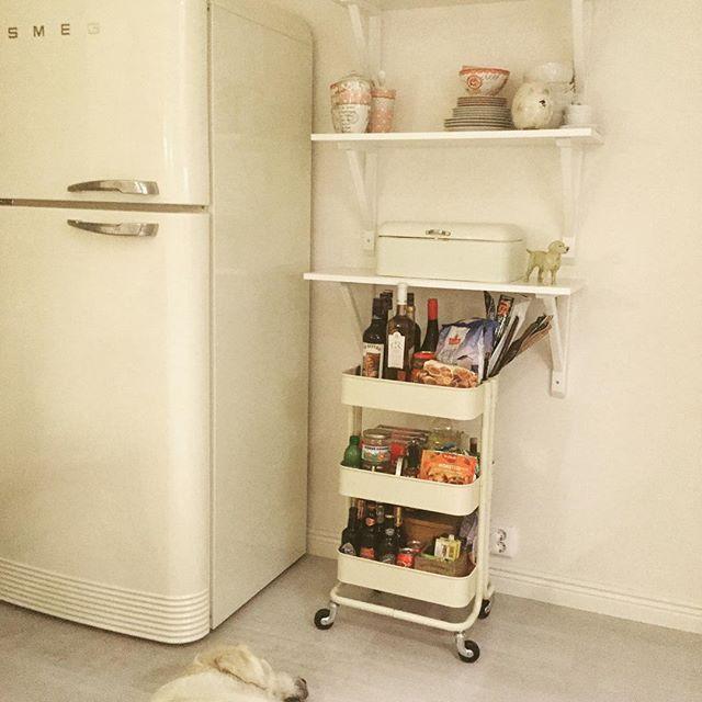 In My kitchen  #goldenretriever #ikea #ikearåskog #råskog #smeg #greengate #lotsoflove