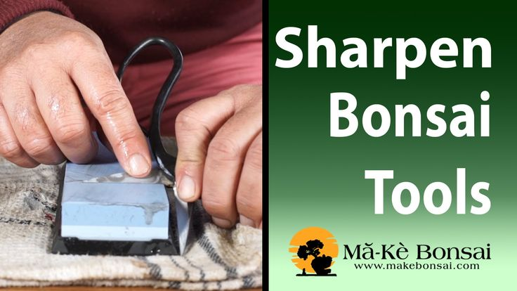 90) Bonsai Tool for Beginners the Sharpening Guide