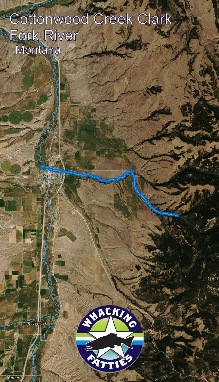 Cottonwood Creek Clark Fork River, Montana fly fishing report. Check out Whacking Fatties for the latest fly fishing report and forecast.  With the goal of better understanding fly-fishing patterns and predicting location and ferocity of fishable events, Whacking Fatties presents the Fatty Factor: a fly-fishing success estimation model using proprietary big data analytics.  We promote responsible fishing via catch and release practice and water resources conservation. Billings, Missoula…