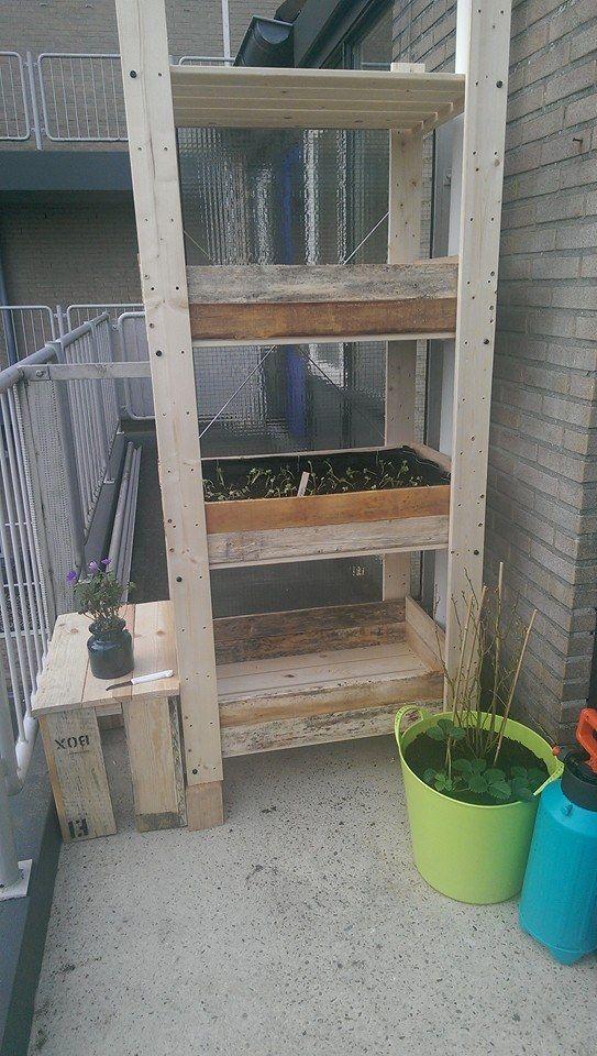 Als je geen tuin hebt maar een balkon hoe moet je dan een moestuin aanleggen rianne haalde - Hoe aangelegde tuin ...