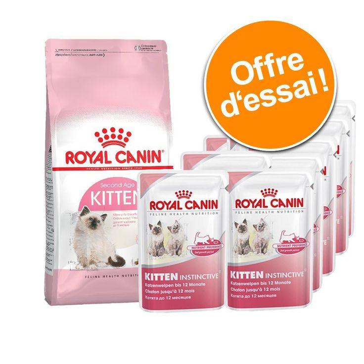 Animalerie  Lot mixte Royal Canin Kitten 400 g  12 x 85 g Kitten Instinctive  400 g Mother & Babycat  12 x 85 g Instinctive en sauce