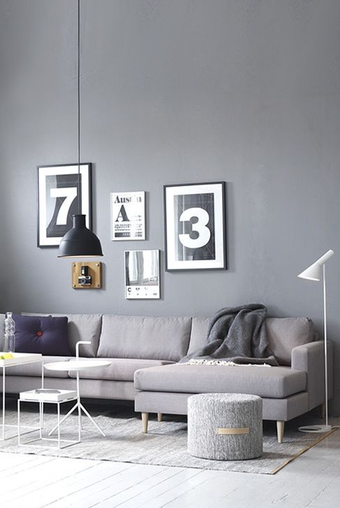 Living room with grey wall.