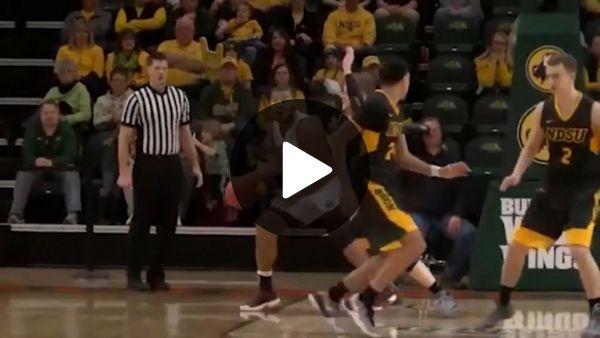 Basketball Super Goal – Lustige Videos – Lustige Bilder   – Funny animal videos