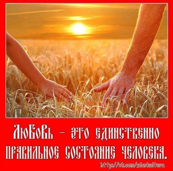 2364604540.jpg — Яндекс.Диск