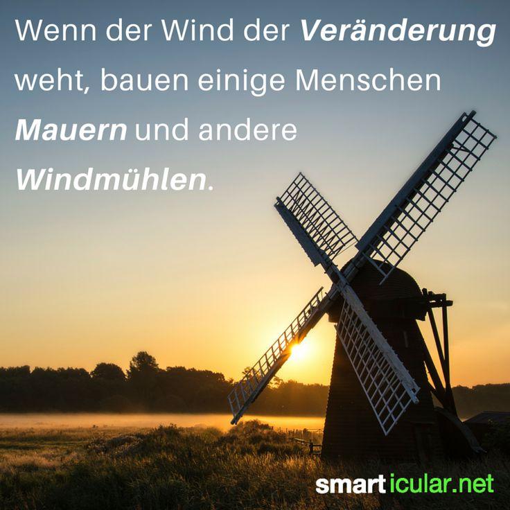 Wenn der Wind der Veränderung weht, bauen einige Menschen Mauern und andere  Windmühlen. - Altes chinesisches Sprichwort