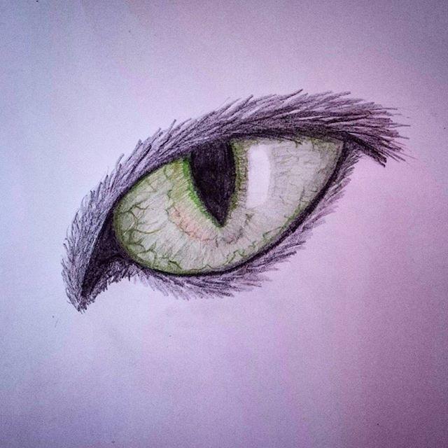 Cateye #draw #drawing #drawingrealistic #realisticdrawing #cat #colour #artpurplefeature #drawing_pencil #draw #drawing #drawingoftheday #artmagazine #artist_4_shoutout #art #arts #watercolour #realisticdrawing #realistic @top.draw #artwork #sketch #rad_artworks #bouchac #worldoftalent #worldofpencils #arts_gallery #artrepost #drawofinsta #rad_artworks #purple #artist_sharing #artmagazine #pencil #pencildrawing #art_realistic