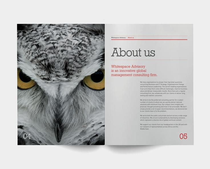 Whitespace Advisory Brochure