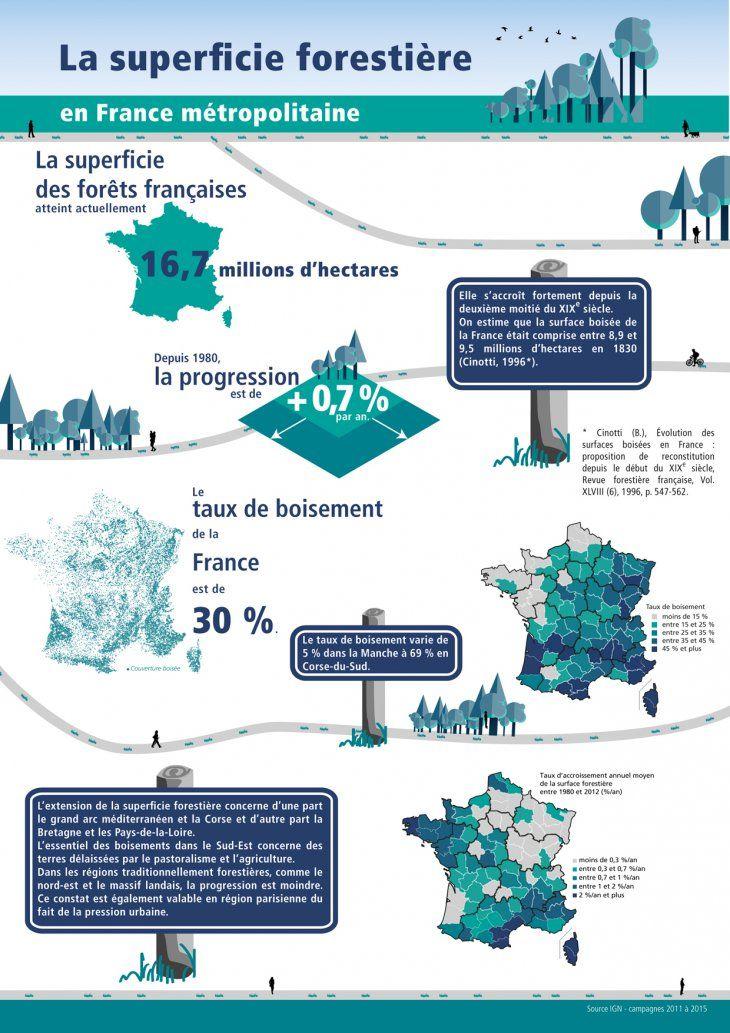 La surface forestière en France métropolitaine - INVENTAIRE FORESTIER