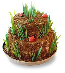 """Not as girly as other ladybug cakes, but incorporates """"dirt"""" that my little nature girl loves"""
