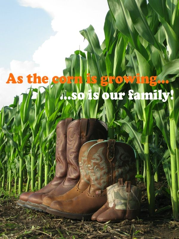 Our Baby Announcement...used my husband's boots, my boots, and the baby's first pair of boots and took the picture in our cornfield :)