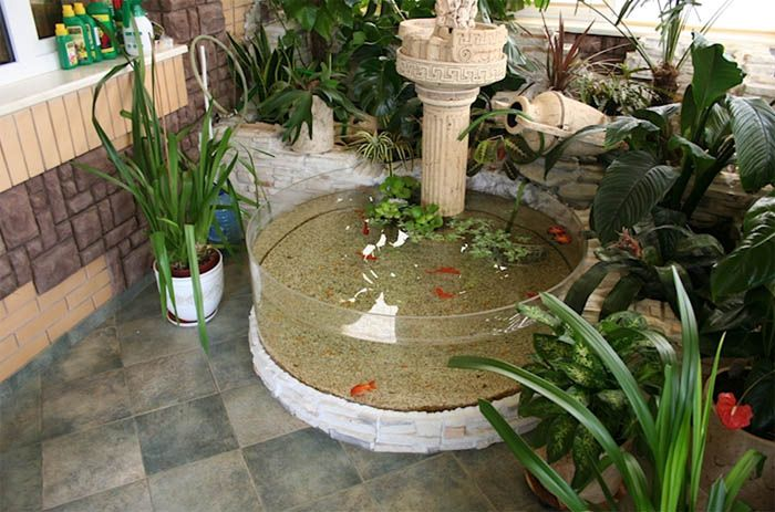 An Outdoor aquarium Is the perfect addition to the backyard. The aquarium will beautify the garden when is well placed and in harmony with the greenery.