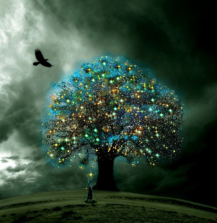 the_tree_of_enlightenment
