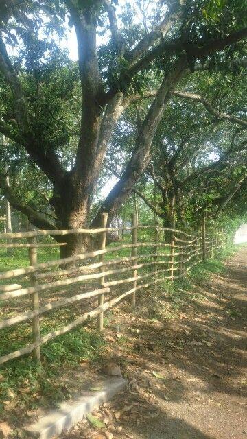 Country side... Kolkata