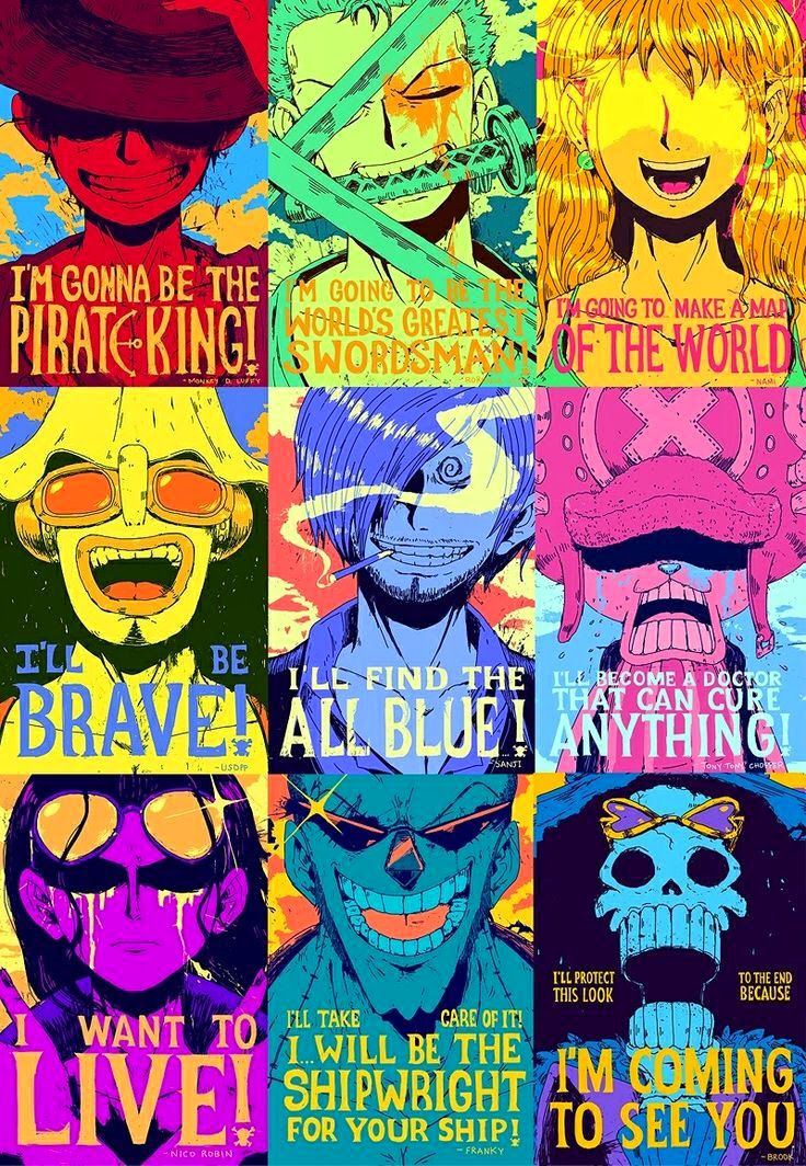 The Straw Hat Crew From One Piece Best Ever