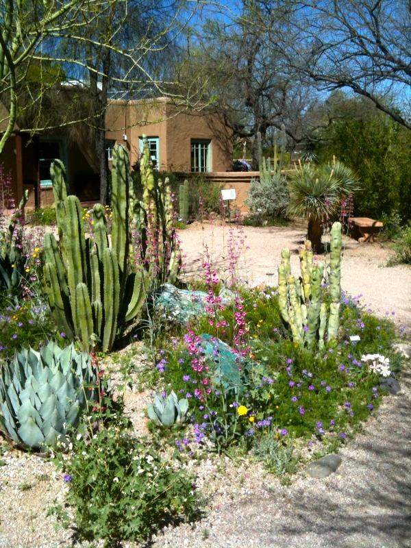 Tucson Botanical Garden   Photo By Olivia