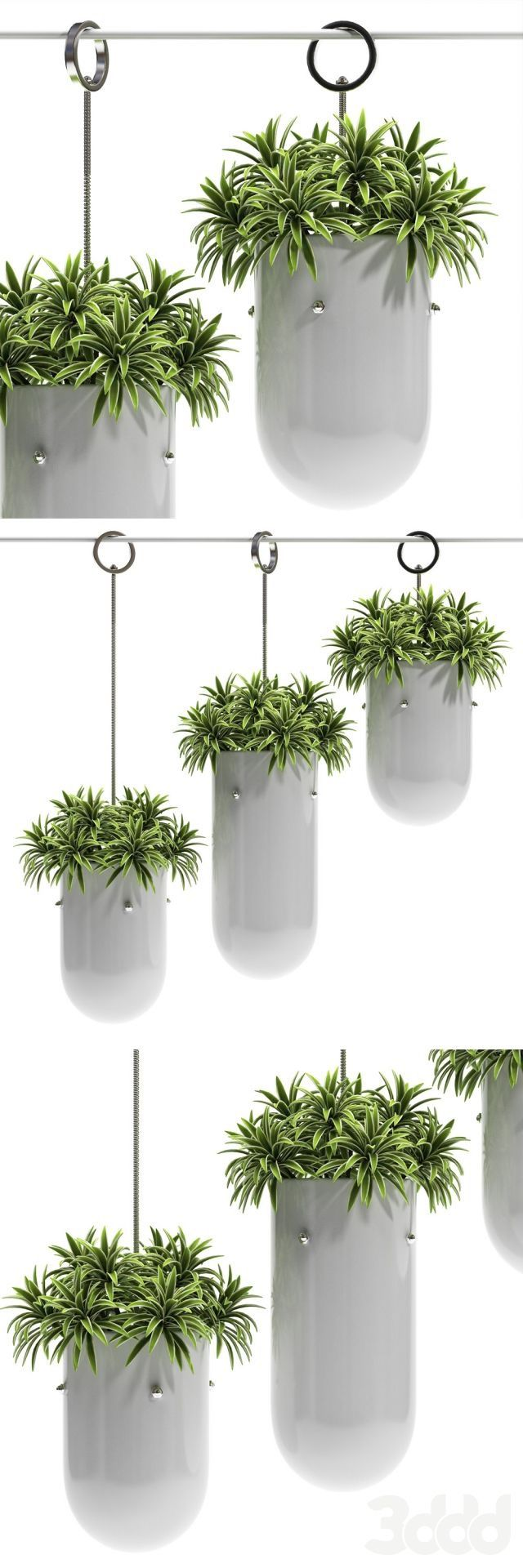 Best กระถางแขวน images on Pinterest House plants String