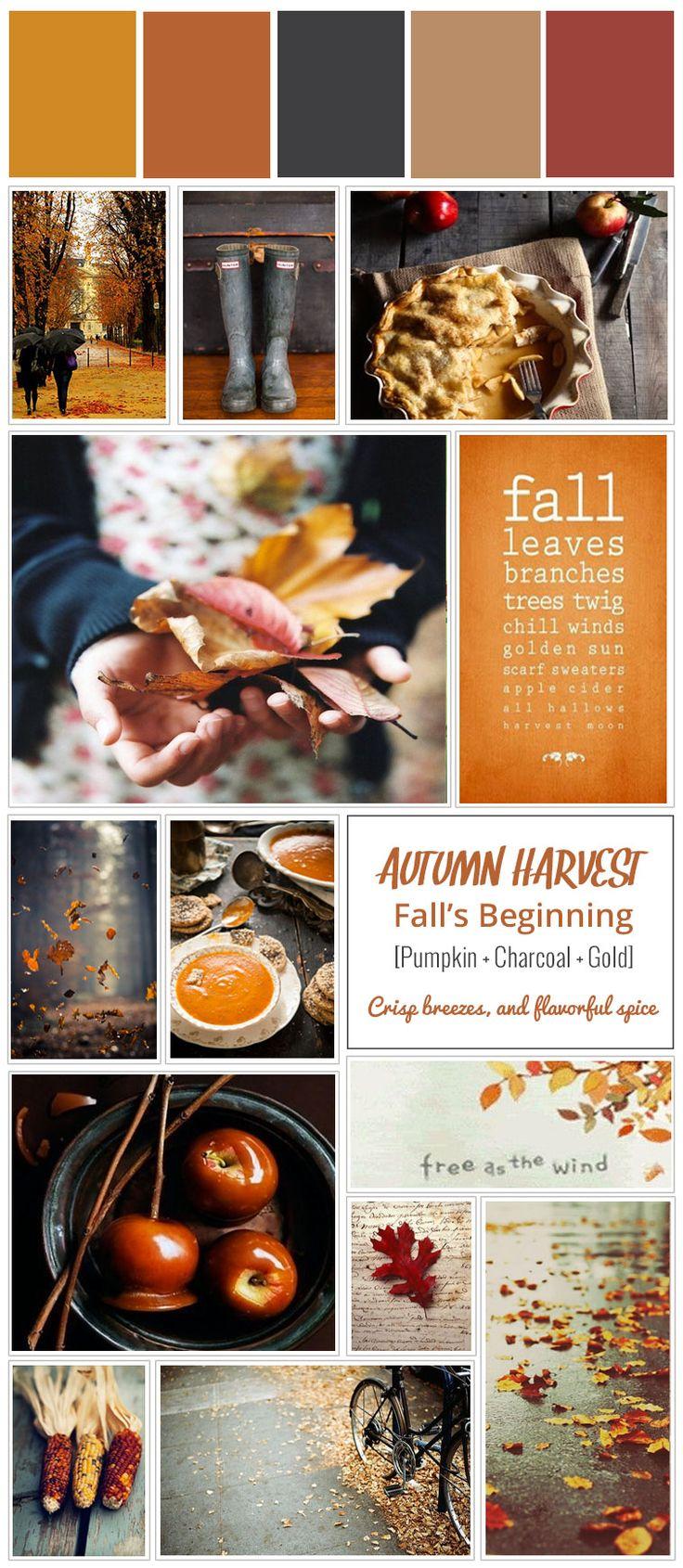 Color Story   Autumn Harvest #fallcolors #orange #yellow