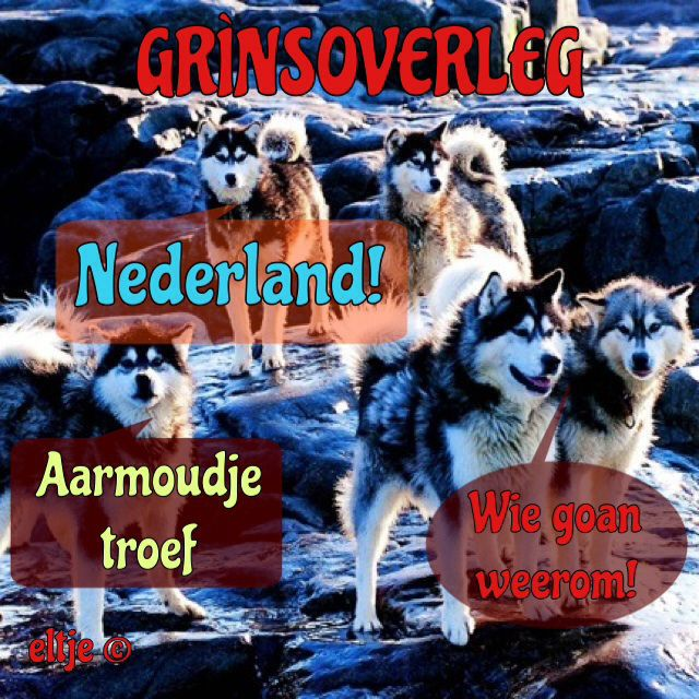 Grìnsoverleg Wolf niet in Nederland.