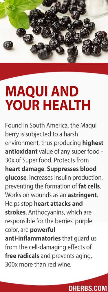 Maqui. Packed with phytochemicals. 4X the antioxidant power of blueberries. Protects from heart damage. Evens out energy. Prevents the formation of new fat cells. Works on wounds as an astringent