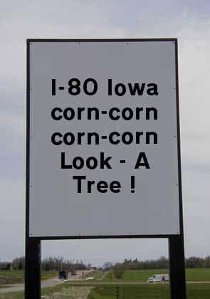 Corn fields along I-80.
