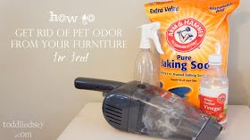 Todd & Lindsey: Good Bye Pet Odor!