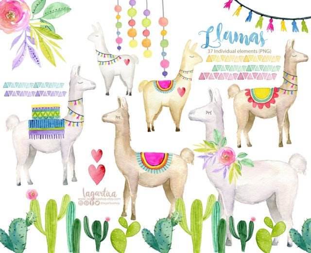 Watercolor No Drama Llama Alpaca Cute Clip Art Png Hand Painted And Flowers Colorful Tassels Suitcase Baggage For Fiesta Decor Sublimation Llamas Y Alpacas F Clip Art Free Clip Art
