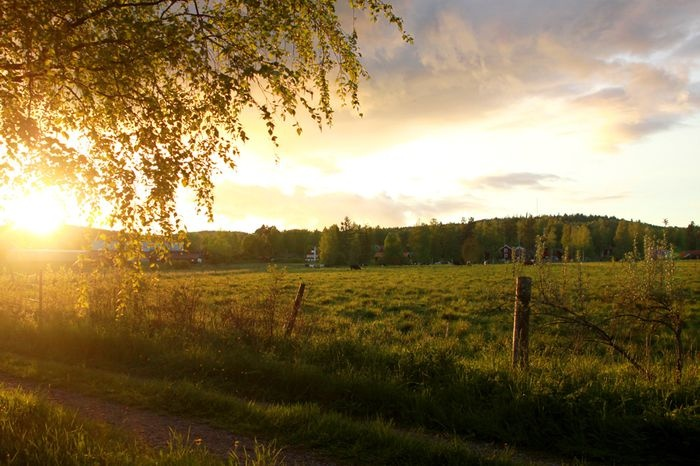 Anders fotoblogg - Bilder från Leksand och Rönnäs med omnejd.