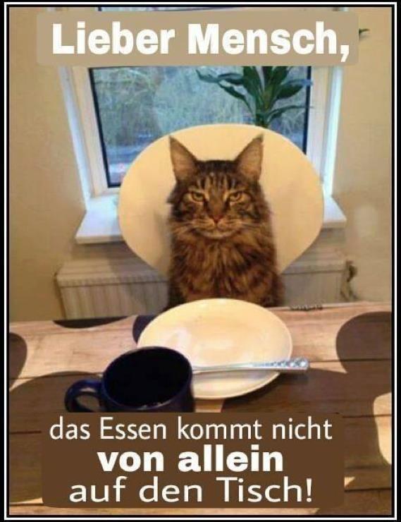 Lieber Mensch, das Essen kommt nicht von allein auf den Tisch!