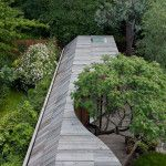 Tree House di 6a Architects