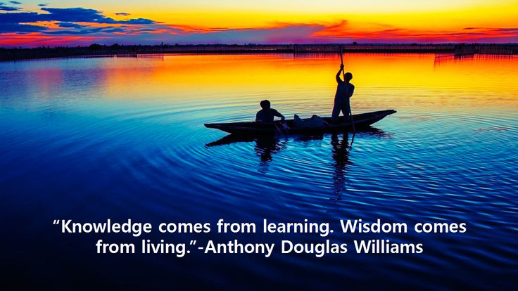 """Knowledge comes from learning. Wisdom comes from living.""-Anthony Douglas Williams"