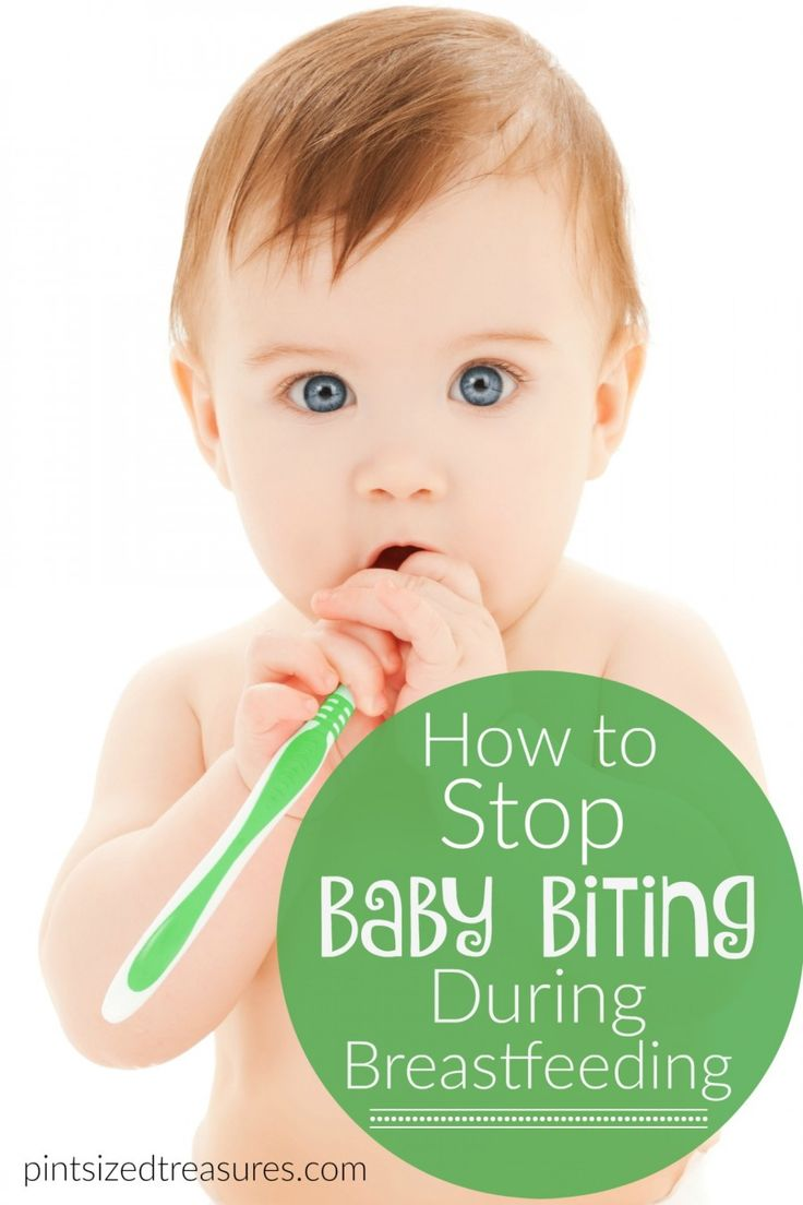 Ouch! Breastfeeding is a great way to nourish and bond with your baby, but it an get painful when your baby starts to bite. Find out how to stop the biting now and enjoy breastfeeding once again!