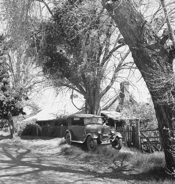 Photograph by Max Dupain of an old country homestead, Western Australia, 1946