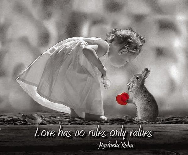 Love Has No Rules -- Looking for Love Quotes? Check our our great collection of inspirational  and thought provoking quotes about love, and feel free to share them with your friends or loved ones.