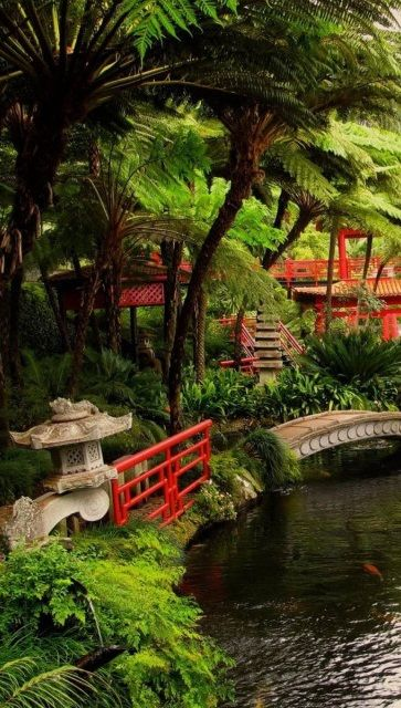 Japanese Zen Garden With Pond 459 best japanese garden pictures and asian landscaping influences