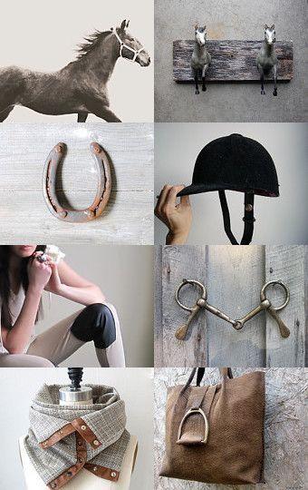 E Q U E S T R I A N  #equestrian