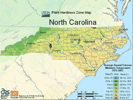 This is the USDA North Carolina planting zone map. You can look at this map to learn the North Carolina climate zones and which one you live in. In order to find your USDA planting zone, simply look at the map and locate where you live.  Then, match the color of that location to the legend to the right.