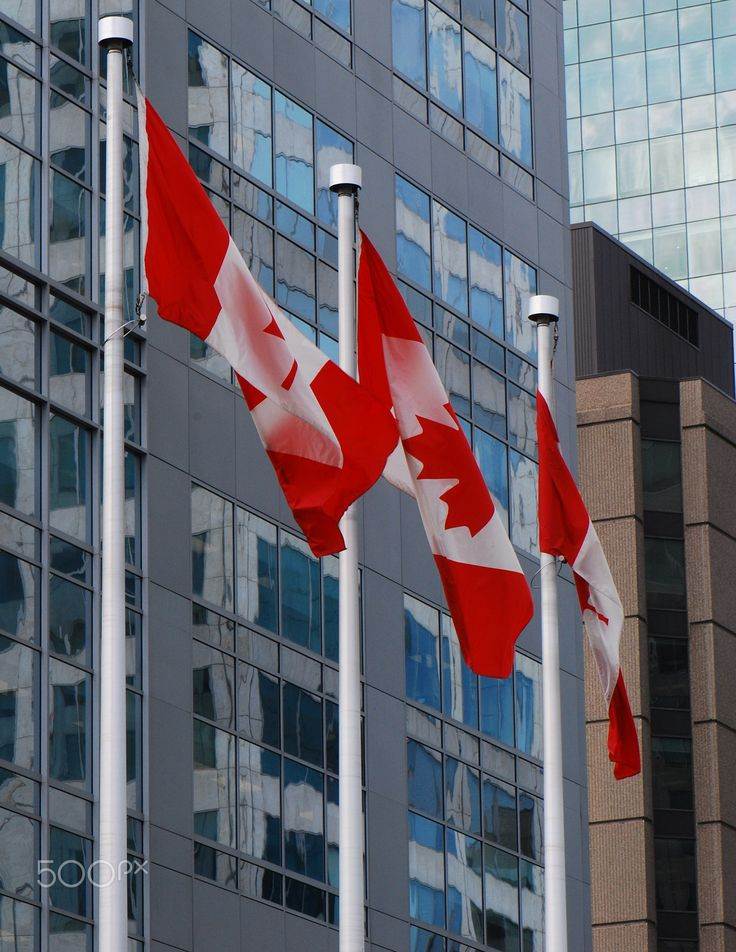 Canadian Flags - Three canadian flags