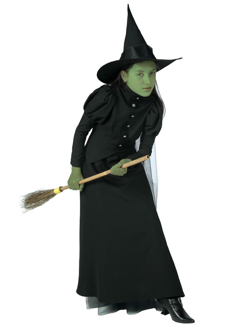 Deluxe Child Witch Costume for N to go with M's Flying Monkey