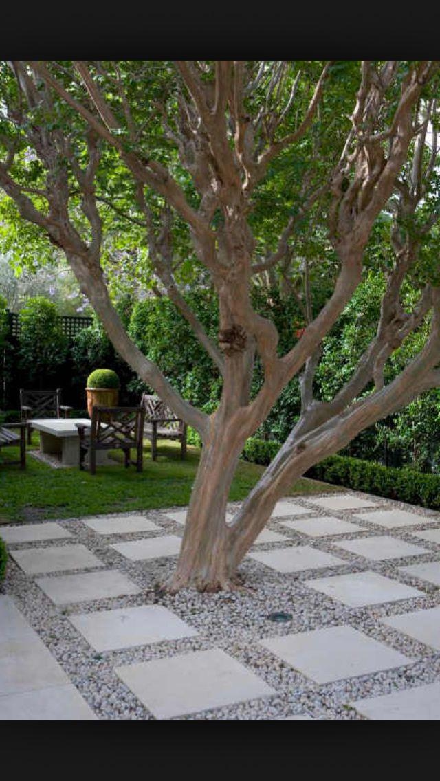 Jardin perros - Pastelones
