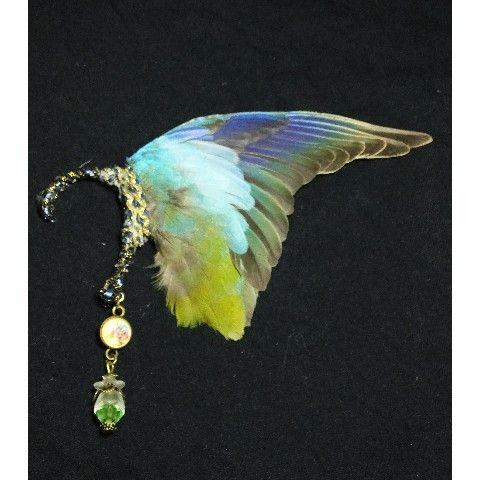 本物の鳥の翼を使用したイヤーフック  サイズ:11×7cm 素材:鳥類の翼 生産国:日本   HP   http://kazetaka728.wix.com/m