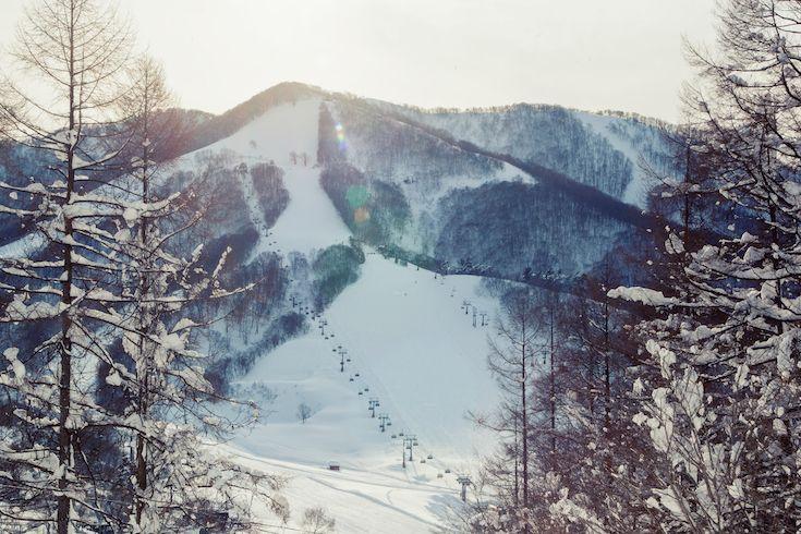 Gorgeous light in Madarao Ski Resort in Nagano Japan