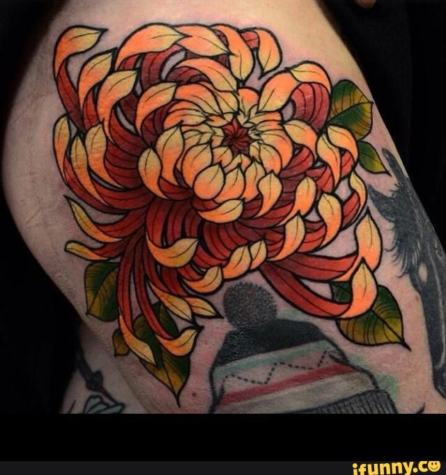 31 best chrysanthemum tattoos images on pinterest chrysanthemum tattoo chrysanthemums and. Black Bedroom Furniture Sets. Home Design Ideas