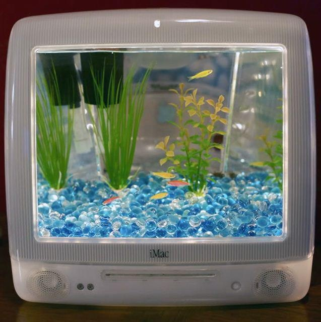 le must av deco d'une agence web!: Ideas, Fish Tanks, Imacaquarium, Imac Aquarium, Laptops Bags, Imac Fish, Fishtank, Crazy Inventions, New Shoes