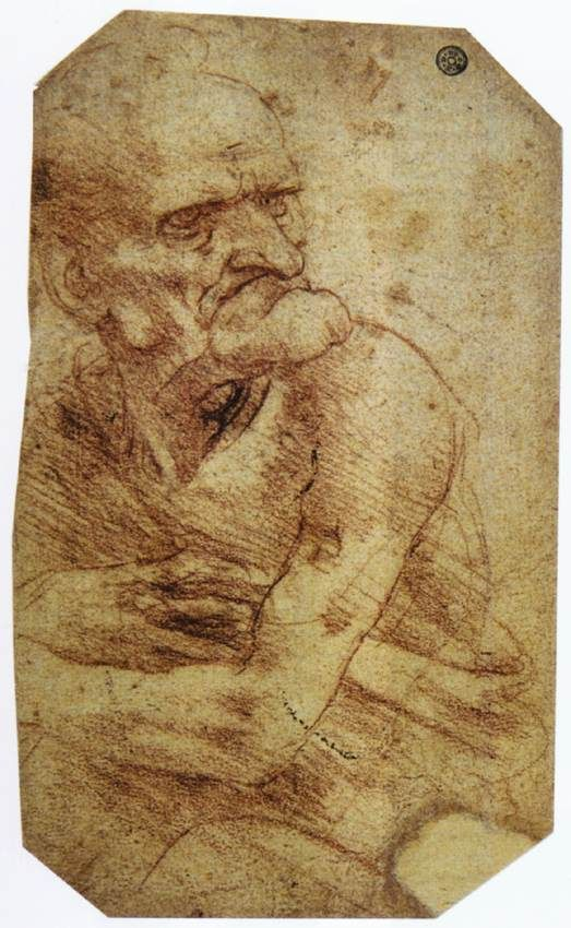 leonardo da vinci paintings   Study of an Old Man - Leonardo da Vinci - WikiPaintings.org