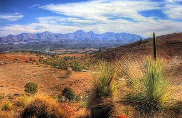 The palette of colours in Flinders Ranges National Park.