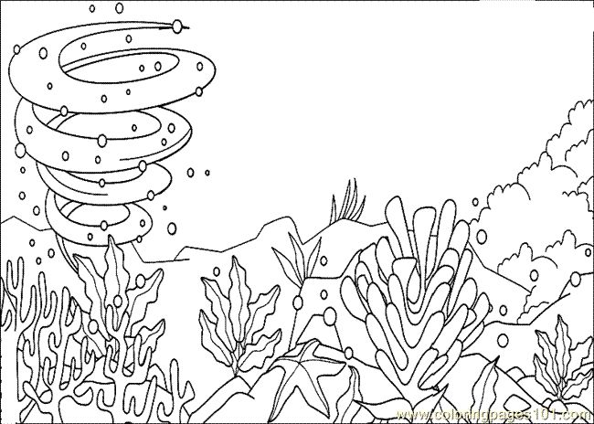 sea animals coloring pages pinterest - photo#43