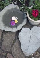 i haven | ISABELLAS
